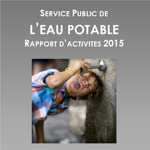 RAPPORT ANNUEL 2015